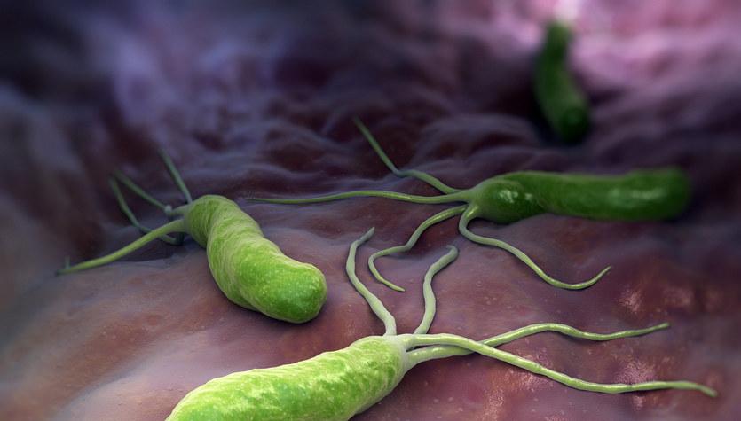 Helicobacter Pylori - niechciany lokator