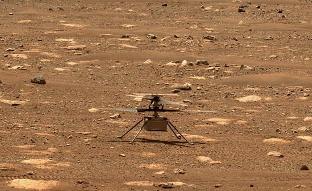 Helikopterek Ingenuity zbiera się do lotu na Marsie