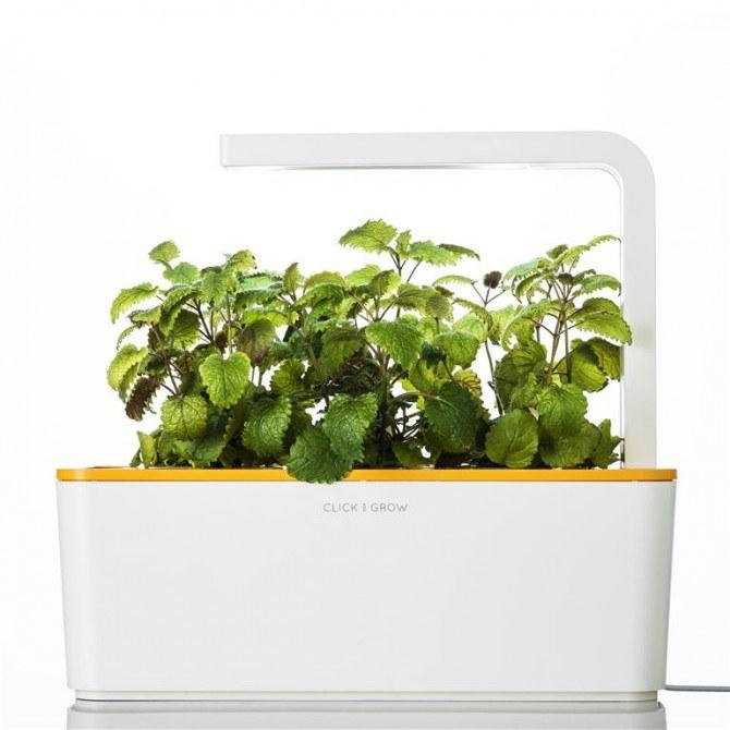 Herb Garden - innowacja w pielęgnacji roślin /materiały prasowe