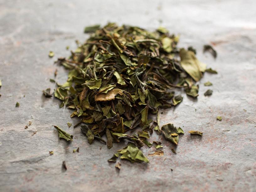 herbata liściasta /© Photogenica