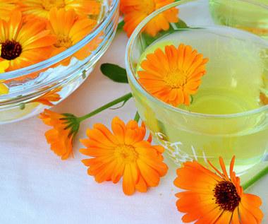Herbata nagietkowa: jak ją przyrządzać i kiedy stosować