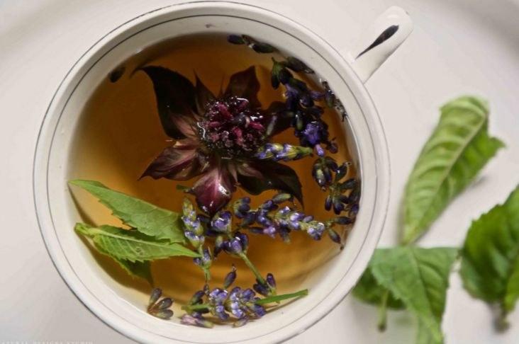 herbata z bergamotki /© Photogenica