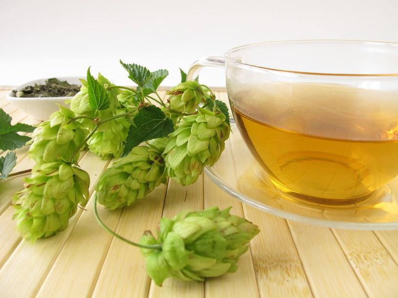 herbata z chmielu /© Photogenica