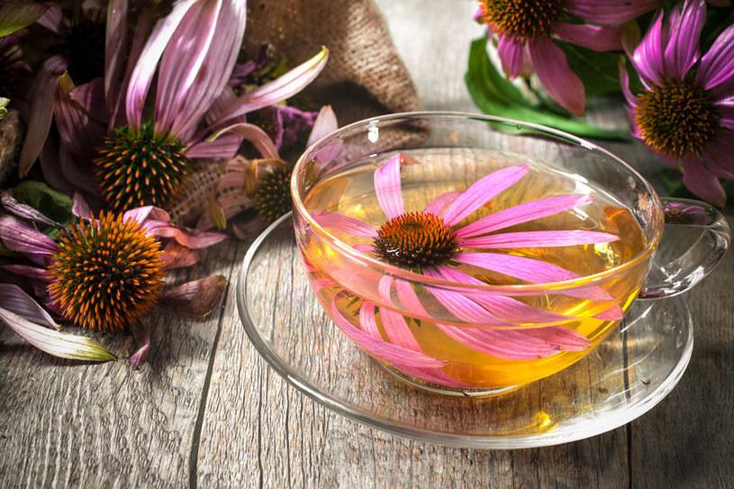Herbata z echinacei może pomóc na wiele dolegliwości /123RF/PICSEL