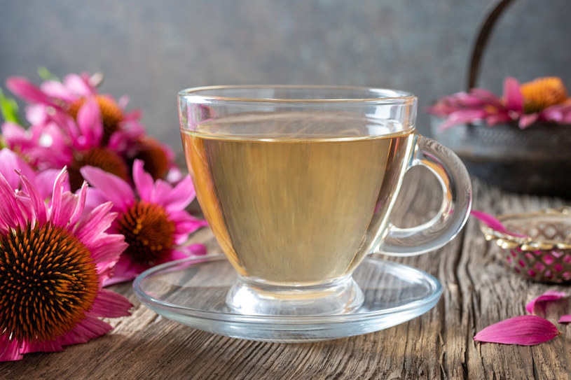 Herbata z jeżówki pomaga na odporność /123RF/PICSEL