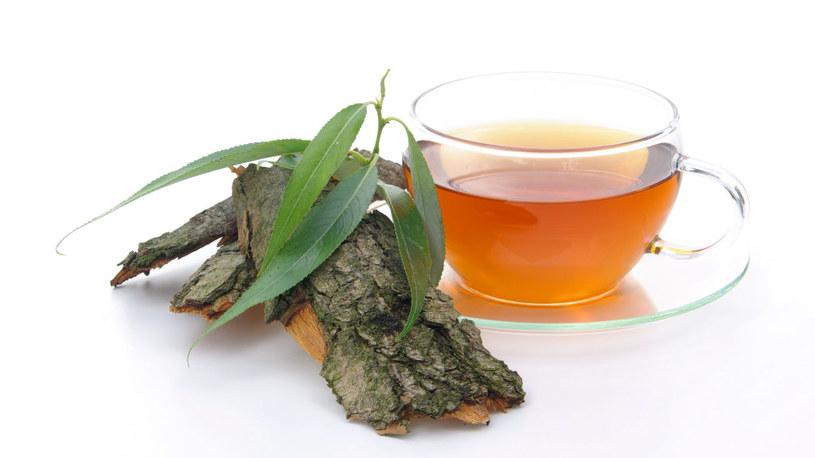 herbata z kory wierzby /© Photogenica