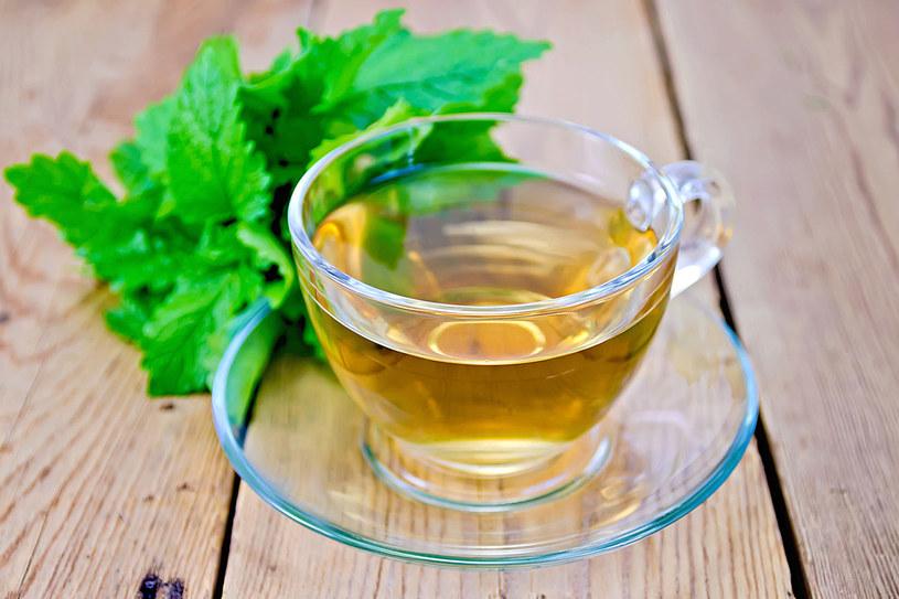 Herbata z melisy /123RF/PICSEL