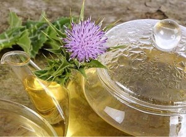 Herbata z ostropestu plamistego właściwości /© Photogenica