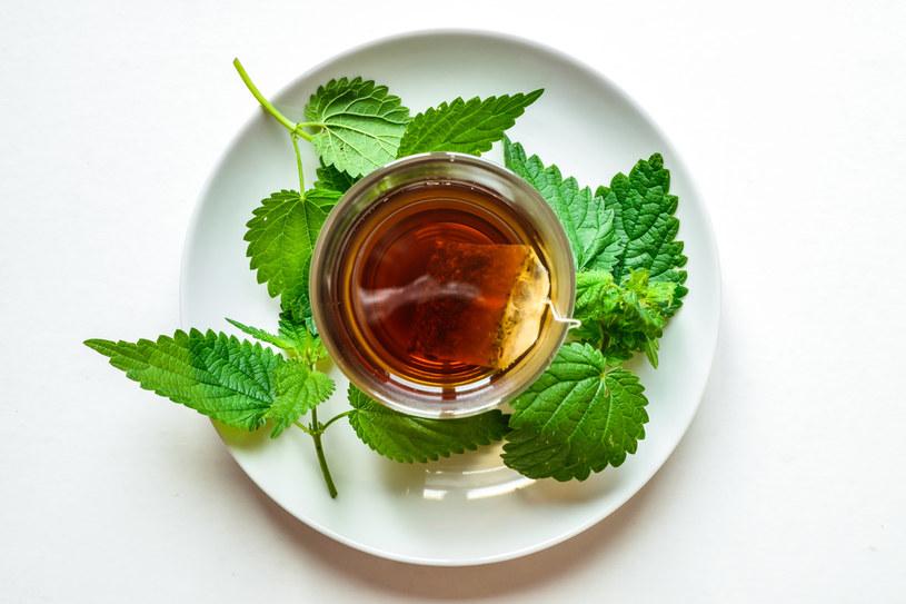 Herbata z pokrzywy to doskonałe źródło witamin, naturalny lek i kosmetyk /123RF/PICSEL