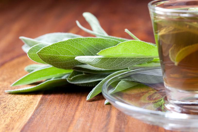herbata /© Photogenica