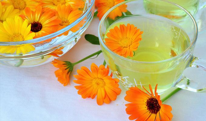Herbatka nagietkowa przyrządzenie /© Photogenica