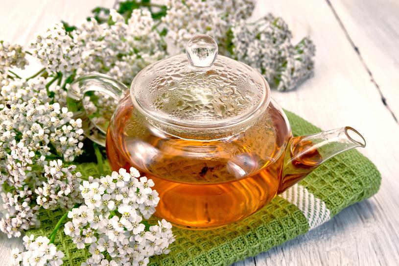 herbatka z krwawnika /© Photogenica