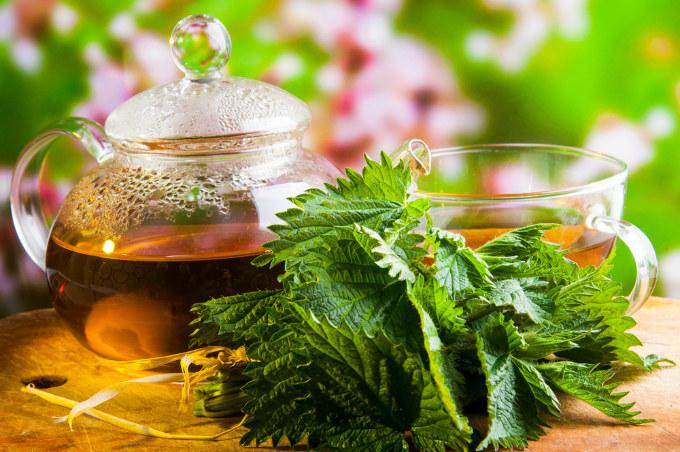 herbatka z ziół /© Photogenica