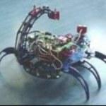 Hexor - polski robot domowy