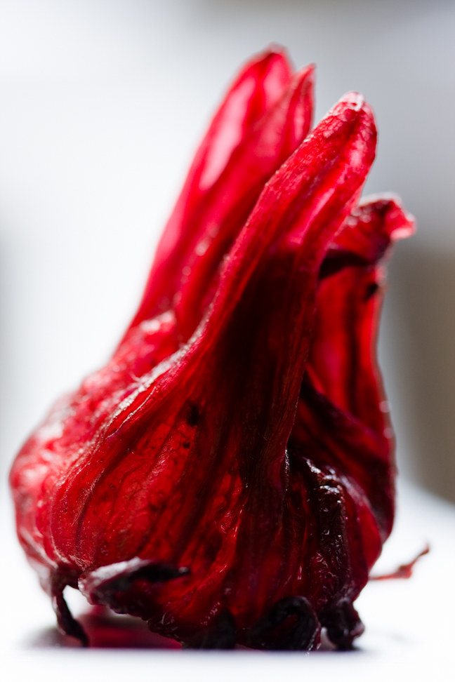 hibiskus /© Photogenica