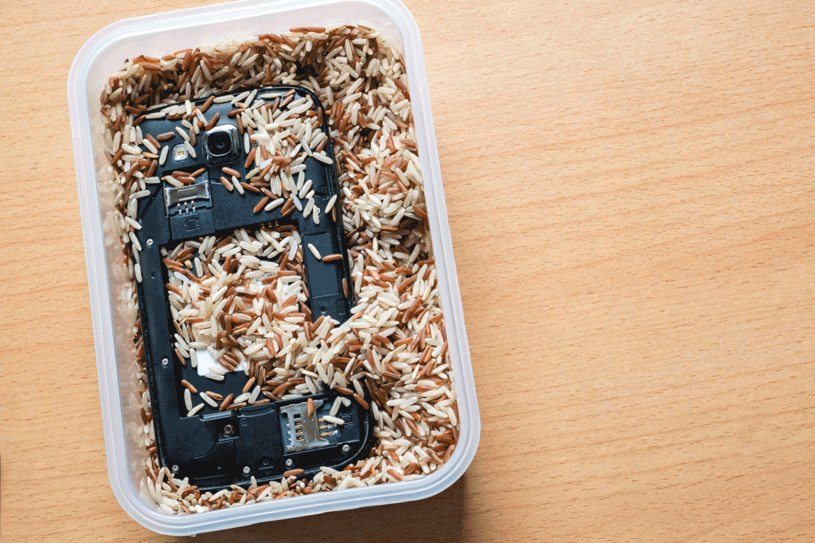 Higroskopijne właściwości ryżu pomogą uratować zalany telefon /123RF/PICSEL