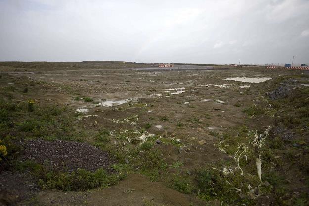 Hinkley Point C (Anglia) - teren pod elektrownię atomową spółki EDF /AFP
