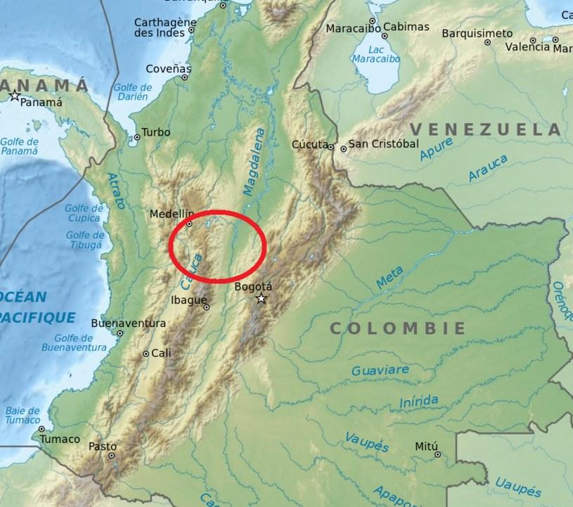 Hipopotamy mnożą się w okolicy Medellin i stolicy Kolumbii, Bogoty /domena publiczna
