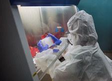 Hiszpania wstrzymała testy kliniczne szczepionki przeciw COVID-19