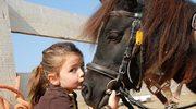 Hodowla koni i jeździectwo - nowy kierunek studiów