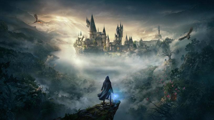 Hogwarts Legacy /materiały prasowe