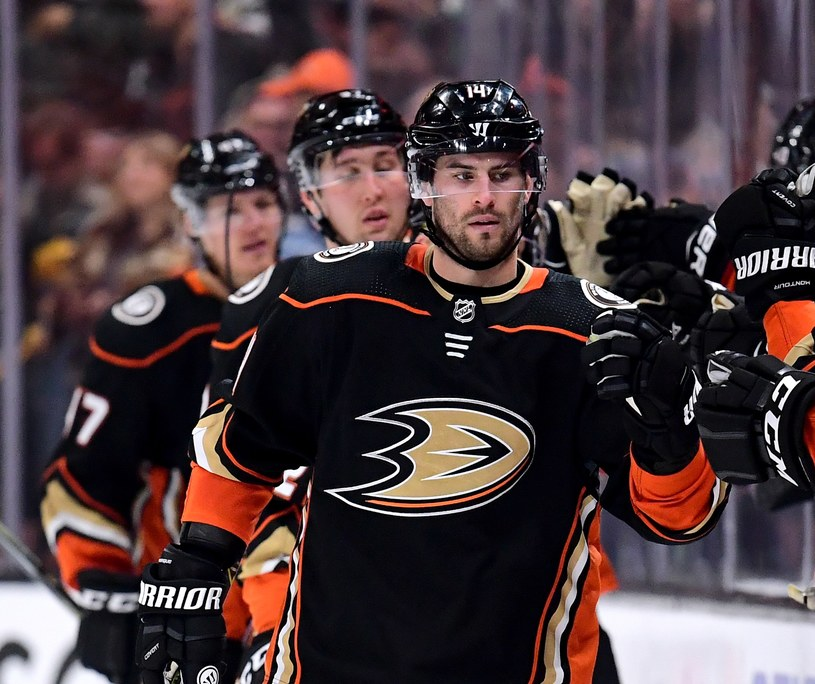 Hokeiści Anaheim Ducks /AFP