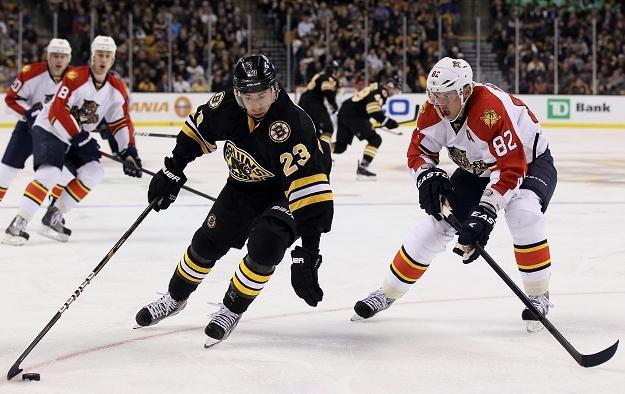 Hokeiści Boston Bruins przegrali z Florida Panthers 0-2 /AFP