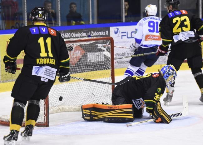 Hokeiści HC GKS Katowice /Jacek Bednarczyk /PAP