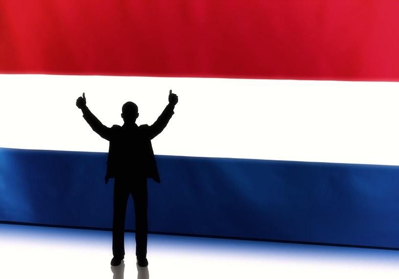 Holandia atrakcyjna dla rodzin /123RF/PICSEL