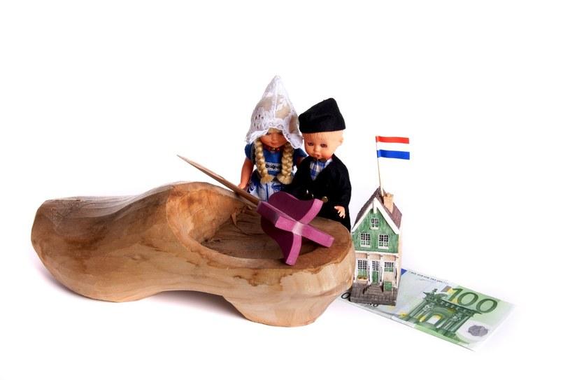 Holandia atrakcyjna zarobkowo /123RF/PICSEL
