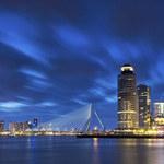 Holandia: Kara za posiadanie gotówki. Nietypowy sposób na walkę z handlarzami narkotyków