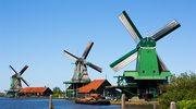 Holandia: Praca w fabrykach i magazynach