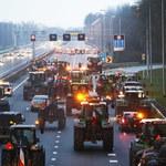 Holandia: Protesty przeciwko rządowej polityce ochrony środowiska