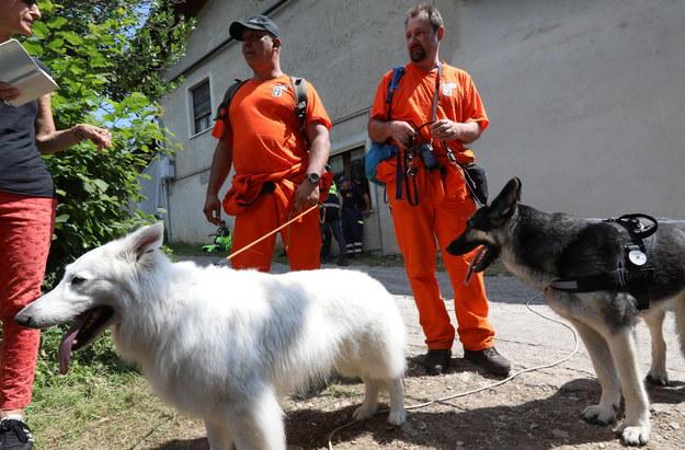 Holenderscy ratownicy z psami tropiącymi włączyli się w poszukiwania autystycznej 12-latki we Włoszech /FILIPPO VENEZIA /PAP/EPA