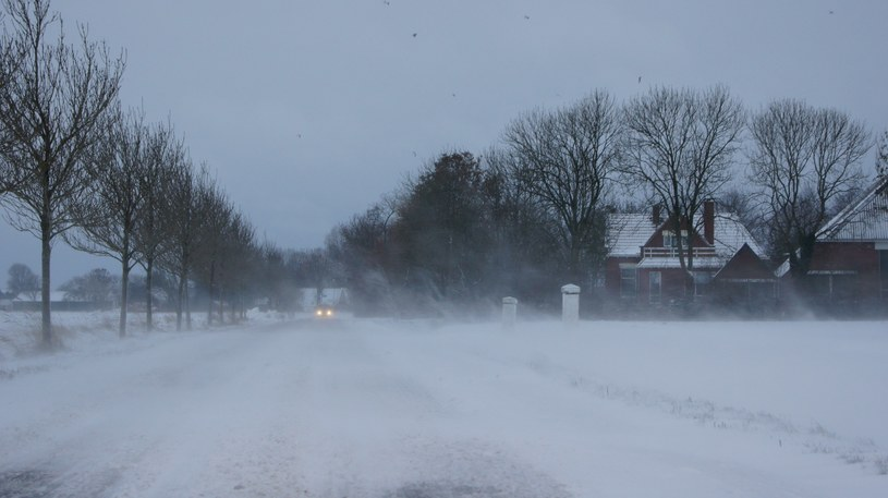 Holendrzy cieszą się na śnieg. Ze sklepów znikają sanki /Twitter/KNMI /Twitter