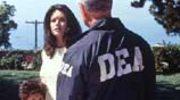 Hollywood: Korepetycje z narkotyków