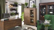 Home office, czyli jak zaaranżować miejsce do pracy zdalnej dla freelancera?