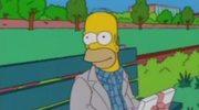 """Homer jako bohater filmu 'Forrest Gump"""""""
