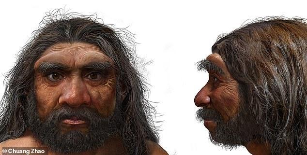 Homo longi /materiały prasowe