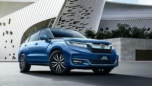 Honda Avancier przeszła niewielką modernizację