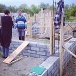 Honey buduje dom