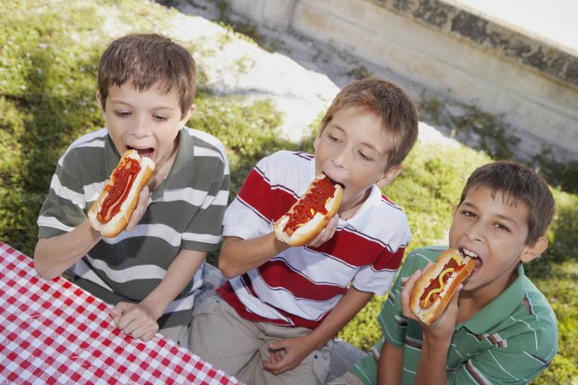 hot dogi a rak /© Photogenica