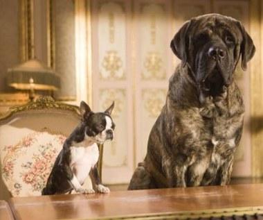 """""""Hotel dla psów"""""""
