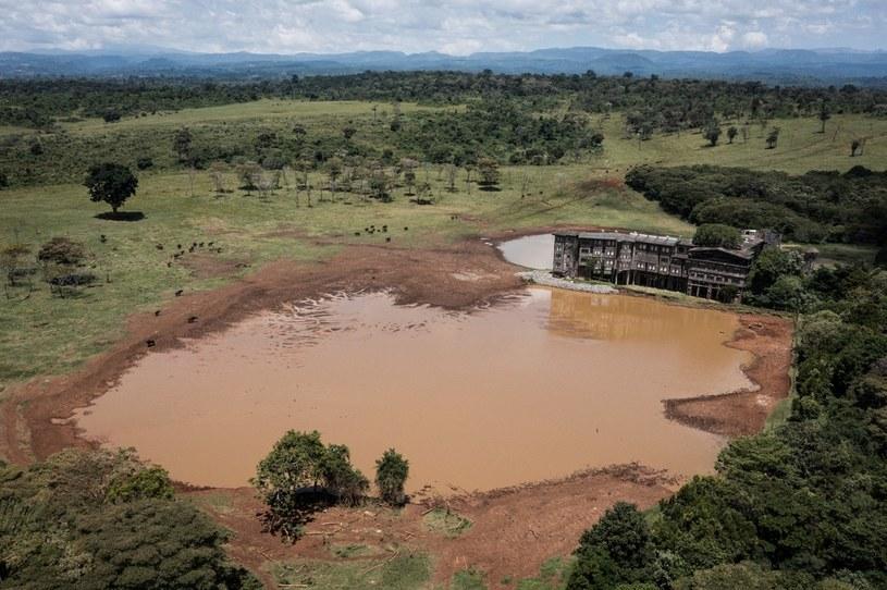 Hotel Treetops. Bliskość wodopoju gwarantuje udaną obserwację dzikich zwierząt /AFP