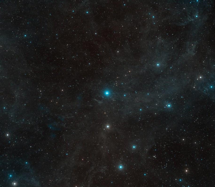 HR8799 w gwiazdozbiorze Pegaza /ESO/Digitized Sky Survey 2 /Materiały prasowe