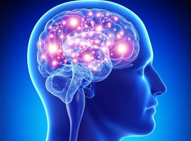 Human Brain Project zagrożony? Wszystko na to wskazuje /123RF/PICSEL