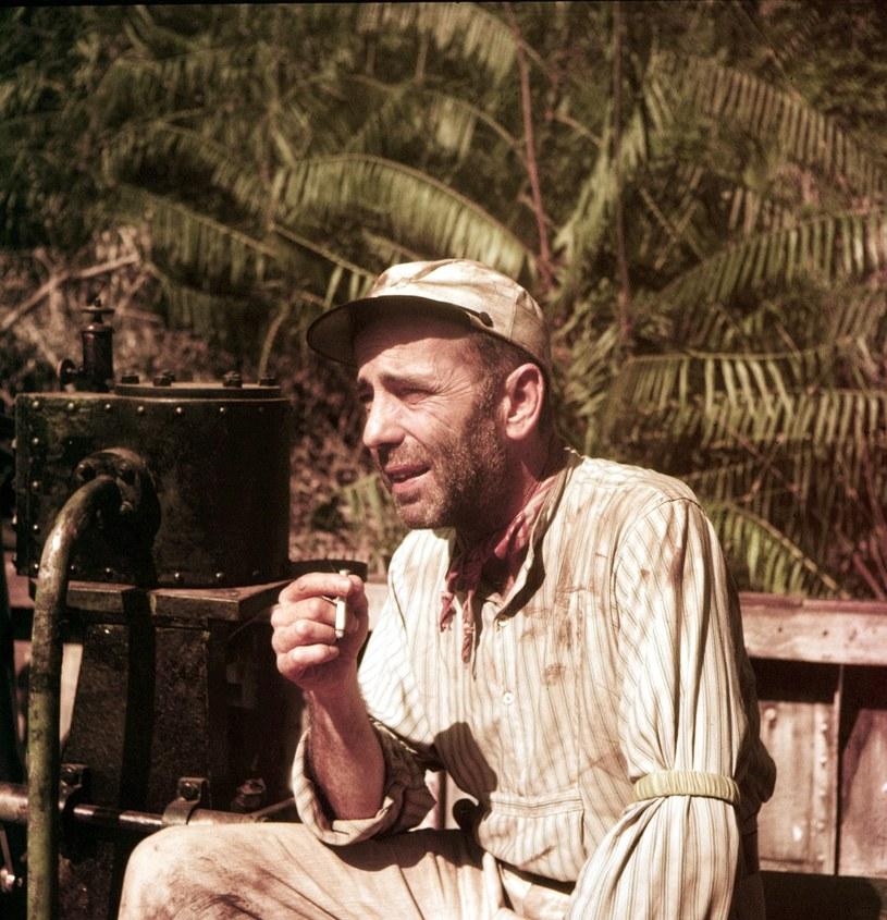 """Humphrey Bogart w """"Afrykańskiej królowej"""" /Everett Collection /East News"""