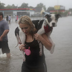 Huragan Harvey w Teksasie: Co najmniej dziewięć ofiar śmiertelnych