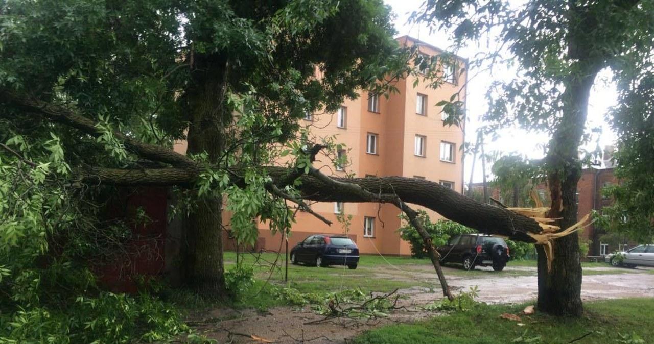 Huraganowy wiatr sieje spustoszenie w Polsce