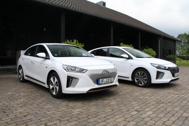 Hyundai ioniq /INTERIA.PL